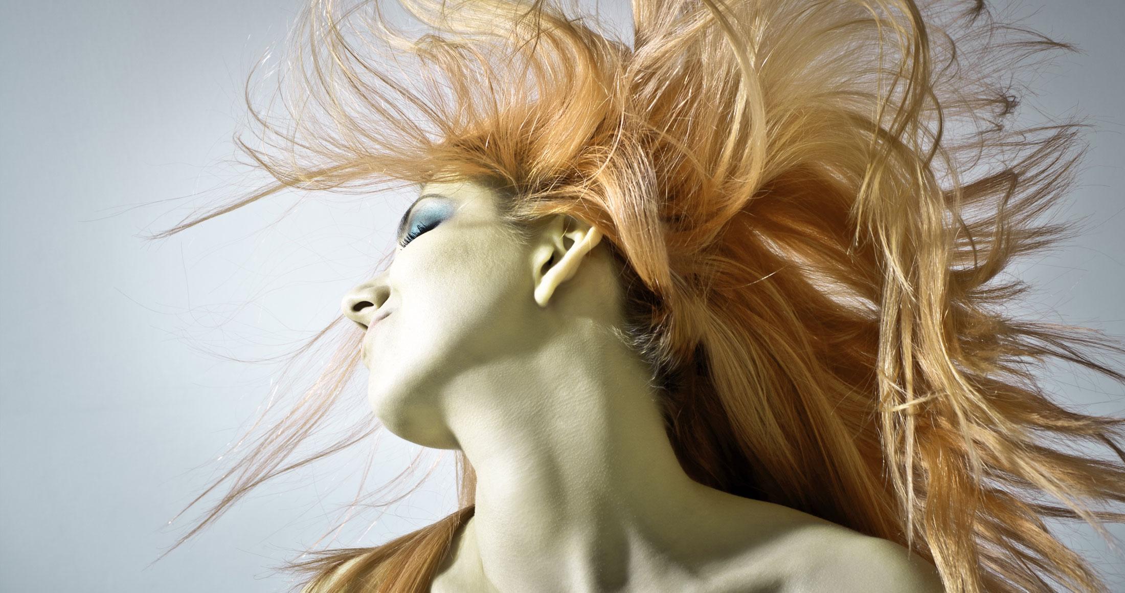 Die Haarschneider